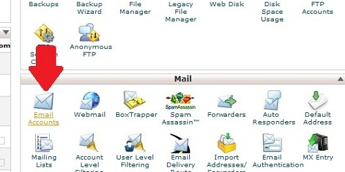 Find the Email Accounts Icon within cPanel