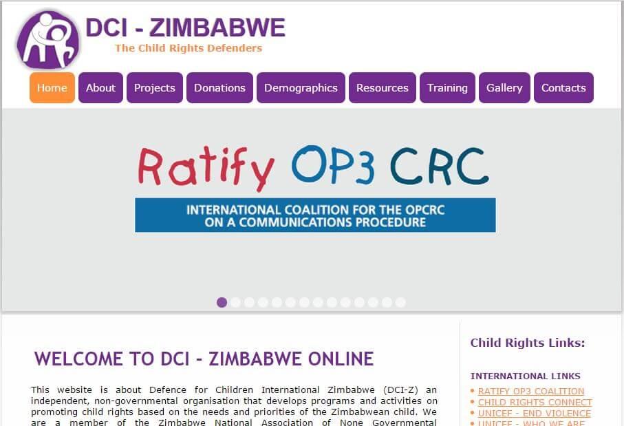 DCI Zimbabwe web design