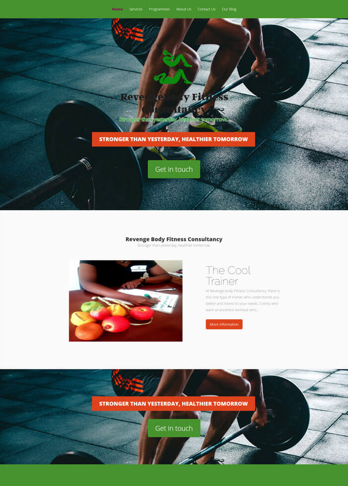 web design project for revengebody